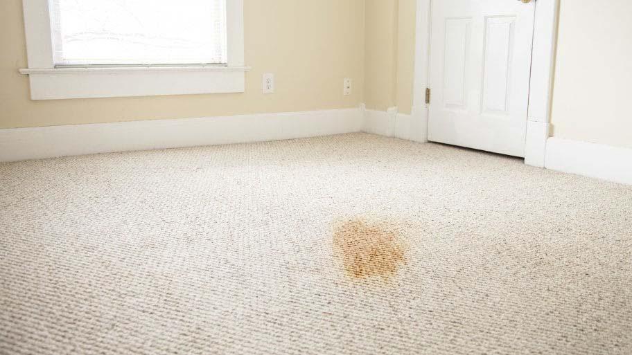 Näin siivoat oksennuksen matosta tehokkasti ja pysyvästi