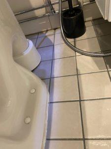 WC pöntön takaosan ennen puhdistusta